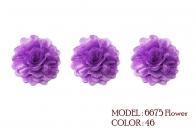 6675 flower