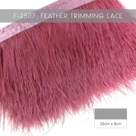 Ostrich Feather  Lace